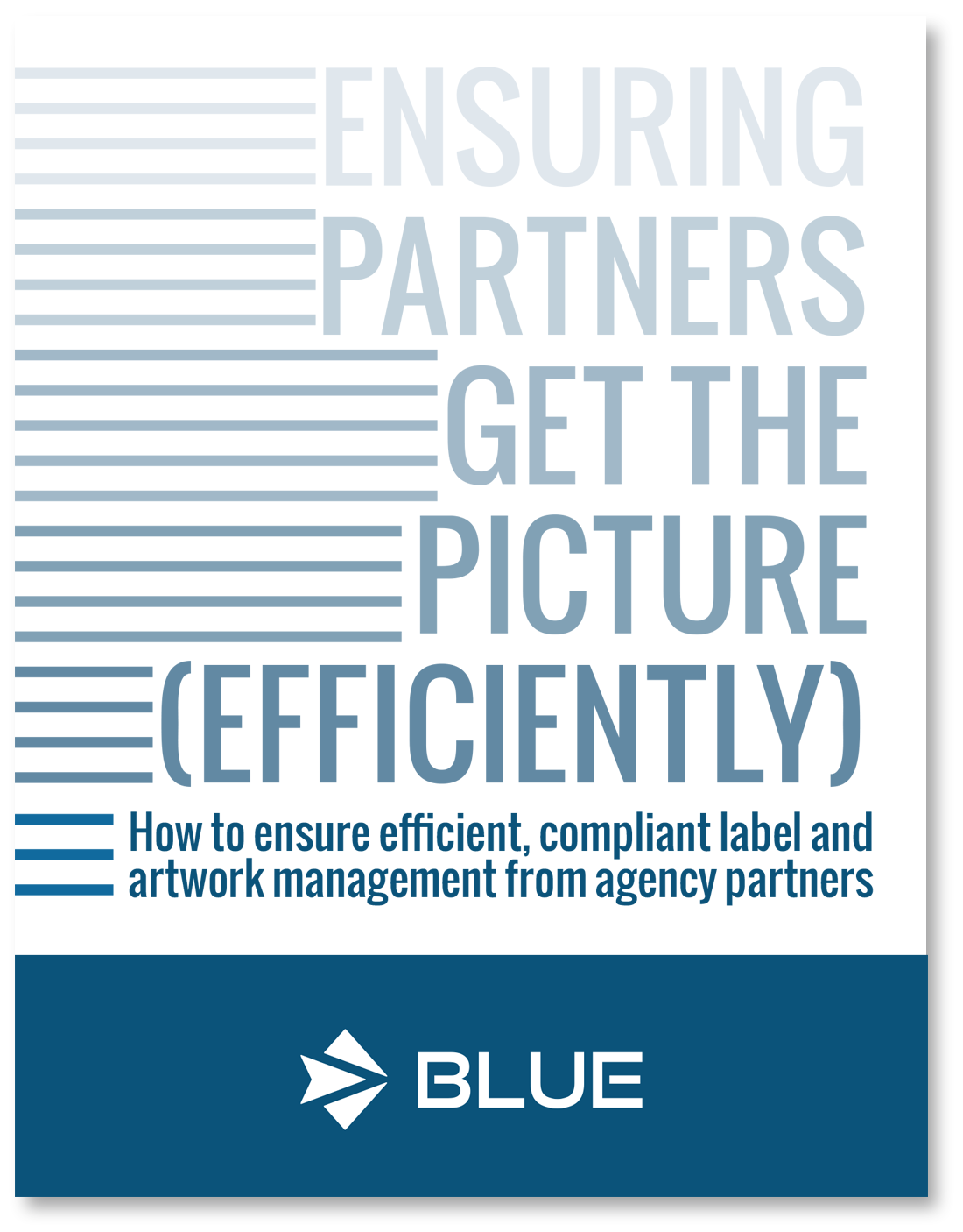 Agency Partners_Cover.png